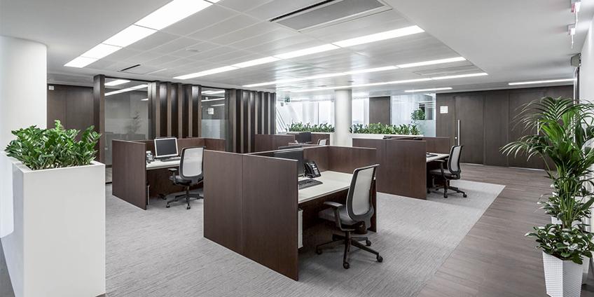 Увлажнение воздуха в офисе необходимо для здоровья персонала